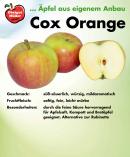 cox-orange-schild