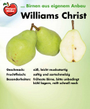 williams-christ-schild