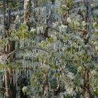 frostschutz07