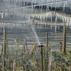 frostschutz08